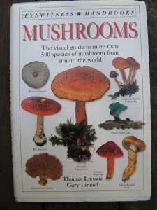 EYEWITNESS HANDBOOK: MUSHROOMS
