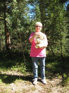 Eleanor's giant puffball haul