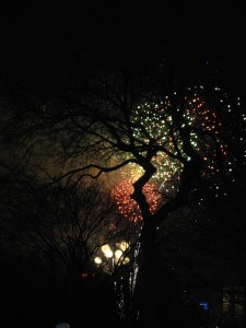 New Year's Eve in Central Park