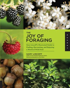TheJoyOfForaging